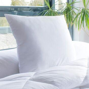 Bleu Calin Lot de 2 oreillers Santé Anti-acariens 60x60 cm